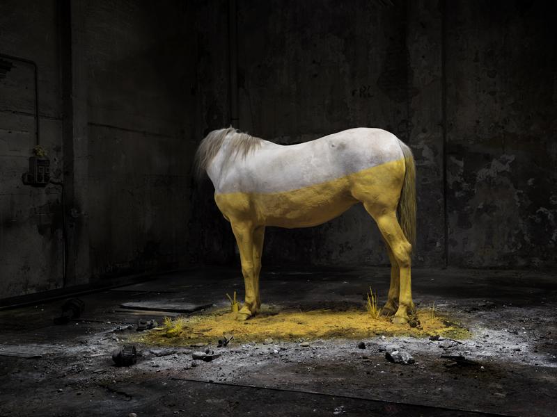 ANTRO-cavallo2tris-FLAT copy